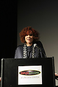 Michaela Angela Davis at The ImageNation celebration for the 20th Anniversary of ' Do the Right Thing' held Lincoln Center Walter Reade Theater on February 26, 2009 in New York City. ..Founded in 1997 by Moikgantsi Kgama, who shares executive duties with her husband, Event Producer Gregory Gates, ImageNation distinguishes itself by screening works that highlight and empower people from the African Diaspora.