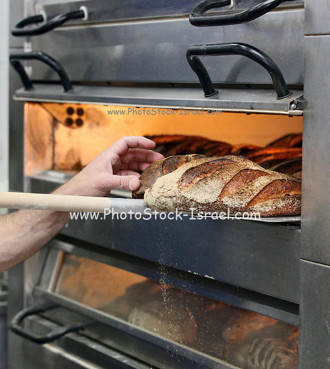 """Loaves of bread in an oven. This image was part of a photo exhibition """"Let there be Bread"""" by Oren Shalev in the Eretz Israel Museum in Tel Aviv, Israel. The motif of the exhibition was bread. Such a basic food yet so complex and diverse. The images were produced by following the nightly work at a bakery from start to finish. To view all images from this exhibition please search for breadexhibition"""