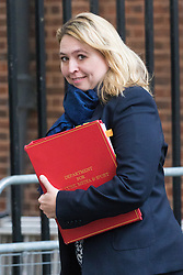 Downing Street, London, October 25th 2016. Secretary of State for Culture, Media and Sport Karen Bradley leaves10 Downing Street following the weekly cabinet meeting and the announcement that the construction of a third runway at Heathrow Airport has initial government approval.