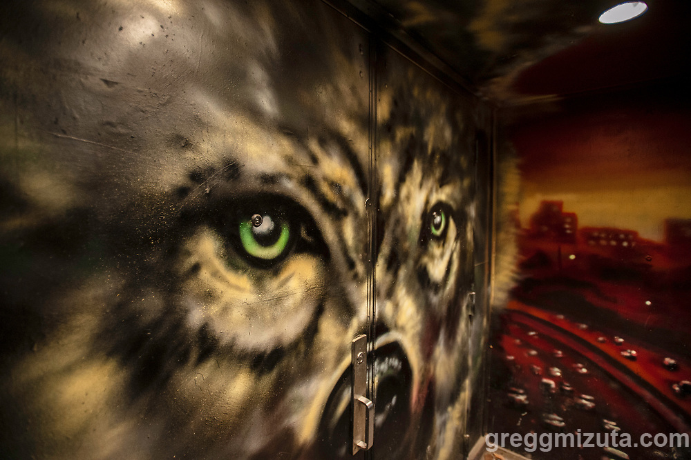 """Tony Caprai's wolf mural at Freak Alley Gallery in downtown Boise, Idaho, December 21, 2018.<br /> <br /> The mural was painted in August 2018, during Freak Alley's eighth annual mural event.<br /> <br /> Tony Caprai has been actively involved in Boise's artistic community since his graduation from Boise State University in 2010. In 2012 Caprai began to further his technical understanding of painting via friends at A Mind's Eye Tattoo and muralists of Sector Seventeen and Freak Alley Gallery. Starting in 2013, Tony performed at events including Treefort Music Festival, """"Modern Art"""" at the Modern Hotel, and numerous First Thursday events as a live muralist. In 2014, an Artist in Residence program by Boise City Department of Arts and History in a large city loft space allowed Caprai to focus on his painting for nine months while curating/hosting multiple group and solo shows.<br /> <br /> Caprai has been working hard in his studio creating a portfolio of abstract work since 2015, with many experimental pieces developing. The current style is a sort of abstract painting collage with many pieces taking a more sculptural relief form."""