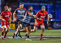 Cardiff Blues' Willis Halaholo in action - Mandatory by-line: Craig Thomas/Replay images - 31/12/2017 - RUGBY - Cardiff Arms Park - Cardiff , Wales - Blues v Scarlets - Guinness Pro 14