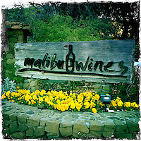 2013 March 10:  Malibu Winery location wine art.  iPhone Hipsta