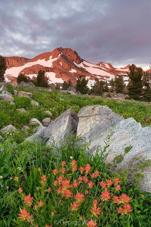 Dawn Light on Mountain with Paintbrush and Split Boulder, Mokelumne Wilderness, Eldorado National Forest, California