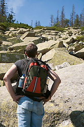 Mature man hiking in Bavarian Forest