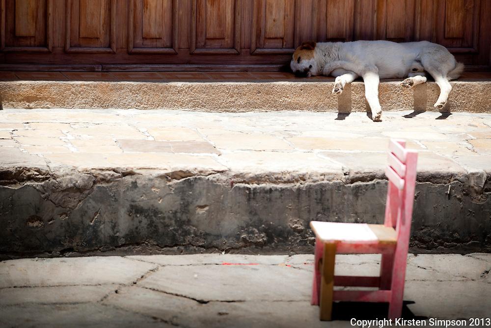 Taking a nap in San Cristóbal