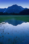 The reflection of the Kenai Mountains is found in a small pond near the coast in Aialik Bay, Kenai Fjords national Park.
