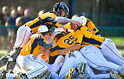OFallon catcher Connor Lindsey (top) joins the dogpile after OFallon defeated Edwardsville in a baseball sectional playoff game at Edwardsville High School in Edwardsville, IL on Wednesday June 9, 2021. <br /> Tim Vizer/Special to STLhighschoolsports.com.