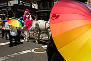 New York, NY - 25 June 2017. New York City Heritage of Pride March filled Fifth Avenue for hours with groups from the LGBT community and it's supporters. A rainbow umbrella sets off a horse carriage with an elaborately gowned rider.