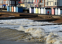 © Licensed to London News Pictures. 24/10/2011. Felixstowe, UK. A woman walks her dog along the seafront. Windy weather along Felixstowe promenade today 24th October 2011. Parts of the UK are braced for wet and windy weather over the next 24hrs . Photo: Stephen Simpson/LNP