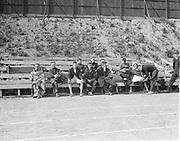 """track meet Portland 1916"" (men on bench)"