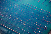 Nederland, Zeeland, Neeltje Jans, 12-06-2009; Mosselpercelen voor mosselteelt in het water van de Roompot, vlak bij de Stormvloedkering in de Oosterschelde. De drijvende hangcultuur zorgt voor grote opbrengt en zandvrije mosselen..Mussel beds for mussel farming in Oosterschelde (East Scheldt) near Neeltje Jans..Swart collectie, luchtfoto (25 procent toeslag); Swart Collection, aerial photo (additional fee required).foto Siebe Swart / photo Siebe Swart