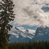 The Canadian Rockies tower above the Athabasca River.