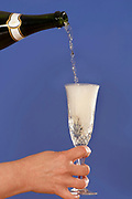 Champagne being poured into a glass.  Model release