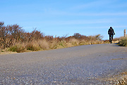 Met de mountainbike door de Haagse duinen fietsen.   Cycling through the dunes of The Hague with a mountain bike.