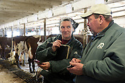Joan Wortman tries to persuade dairy classifier Doug Seidel to increase the score of one of her animals at Green Acres Milking Shorthorns in South Randolph, Vt. Tuesday, March 22, 2016. The Wortmans have historically classified their cows, a judging process that looks at physical traits, milk production and breeding history to help make breeding decisions and improve the quality of their herd.  <br /> (Valley News - James M. Patterson) Copyright Valley News. May not be reprinted or used online without permission. Send requests to permission@vnews.com.