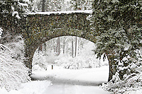 A foot bridge in a snow covered park.