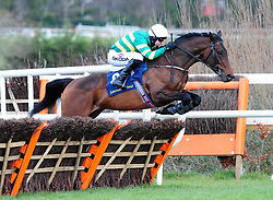 Sir Erec and Mark Walsh go on to win the Tattersalls Ireland Spring Juvenile Hurdle during day two of the Dublin Racing Festival at Leopardstown Racecourse.