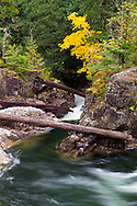 Fall colours and the Little Qualicum River near the lower falls in Little Qualicum Falls Provincial Park on Vancouver Island, British Columbia, Canada