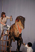 Workers paint the head and foot of robotic Allosaurus, part of a collection of robotic dinosaurs made by the California-based company Dinamation International. The dinosaurs are sent out in traveling displays to museums around the world. The dinosaur's robotic metal skeleton is covered by rigid fiberglass plates, over which is laid a flexible skin of urethane foam. The plates and skin are sculpted and painted to make the dinosaurs appear as realistic as possible. The creature's joints are operated by compressed air and the movements controlled by computer.