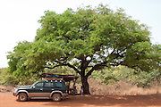 A Toyota stopped in the shade of an acacia tree on the route between Banfora and Bobo Dioulasso, Burkina Faso