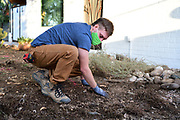 Before the excavator can come in and dig, Charlie needs to remove rocks from my front yard. They'll be needed during the building of the water harvesting basins on day two.