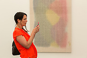 A woman snaps a photo in the Elizabeth Dee Gallery. Behind her is a piece by Mark Barrow.