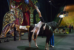 """Members of The Thundering Cossack Warriors practice between performances. <br /> Ringling Bros. and Barnum & Bailey Circus started in 1919 when the circus created by James Anthony Bailey and P. T. Barnum merged with the Ringling Brothers Circus. Currently, the circus maintains two circus train-based shows, the Blue Tour and the Red Tour, as well as the truck-based Gold Tour. Each train is a mile long with roughly 60 cars: 40 passenger cars and 20 freight. Each train presents a different """"edition"""" of the show, using a numbering scheme that dates back to circus origins in 1871 — the first year of P.T. Barnum's show."""