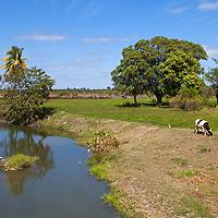 Central America, Cuba, Remedios. Farmlands of rural Cuba.