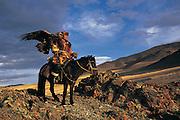 Kazakh & Golden eagle<br /> (Aquila chrysaetos)<br /> eagles used for hunting<br /> Western Mongolia