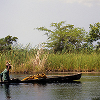 Caribbean, Jamaica, Black River. A fishing boat heads up Black River in Jamaica.