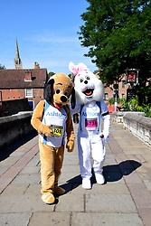 Run Norwich annual 10k road running race, 5 August 2018