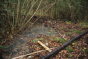 """BUTLER COUNTY, AL – DECEMBER 7, 2017: A basketball goal is surrounded on three sides by hand-dug trenches that carry raw sewage to a nearby creek, feeding the larger Pigeon Creek situated south of Butler County. The makeshift basketball court is used regularly by children ages five through eighteen.<br /> <br /> Inadequate sewage treatment has plagued Alabama's poor Black Belt community for decades, often leading to problems of overflow and contamination of the area's water supply. In some areas, improper sewage treatment has even put the population at risk of diseases long believed to be extinct in the United States. With failing or absent municipal sewer service in Lowndes and Butler counties, many families choose to live with open systems made from PVC pipe. This """"straight pipe"""" method carries raw sewage away from the home as far as gravity allows, often directing it into nearby streams or even onto open land just feet from the front door. Private septic tanks are prohibitively expensive for most, but even those who use them complain of sewage backing up into their homes during heavy rains, due to the region's chalky clay soil. As a cheap fix, trenches are often dug by residents for temporary relief, diverting raw sewage away from their homes and into nearby creeks."""