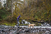 Oregon, Alaska and Christmas Island guide Kate Taylor is joined by her sidekick Kada as they work coastal rivers during persistant downpours in the quest for steelhead on the two handed spey rod.