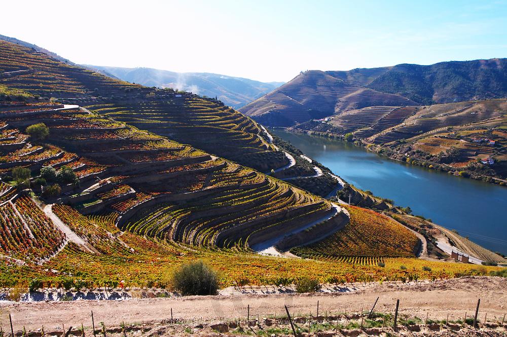 douro river and steep vineyards quinta do seixo sandeman douro portugal
