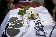 Santiago Mazzarovich/ URUGUAY/ MONTEVIDEO/ El 21 de noviembre falleció Luisa Cuesta a sus 98 años. Cuesta fue una referente en la lucha por verdad y justicia y contra la impunidad. Integró Madres y Familiares de Detenidos Desaparecidos, y buscó a su hijo Nebio durante 42 años. Madres y Familiares de Detenidos Desaparecidos convocó a concentrar en la Plaza Primero de Mayo para rendir homenaje a Luisa Cuesta, y luego se enterraron sus restos en el Cementerio del Norte.<br /> <br /> En la foto: Entierro de Luisa Cuesta. Foto: Santiago Mazzarovich / adhocFOTOS.