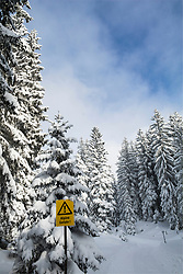 Warning sign with snow covered trees against trees