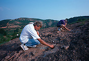Phil Currie, curator of dinosaurs for the Royal Tyrrell Museum of Paleontology in Drumheller, Canada excavates an egg nest on Green Dragon Mountain in Hubei Province of China with paleontologist Charlie Magovern.