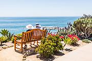 Friends Spending Time Together Overlooking Laguna Beach Coastline