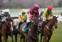 Richard Johnson and Beer Goggles in action in The galliardhomes.com Cleeve Hurdle Race run during Festival Trials Day at Cheltenham Racecourse.
