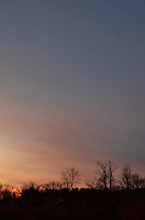 Winter Dawn Sky and Clouds in New Jersey from My Backyard. Image taken with a Leica T camera and 11-23 mm lens (ISO 100, 23 mm, f/8, 1/60 sec).