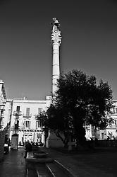 Vista della Colonna di Sant'Oronzo a Lecce. In primo piano sulla destra si vede l'ulivo piantato da alcuni anni in occasione di...