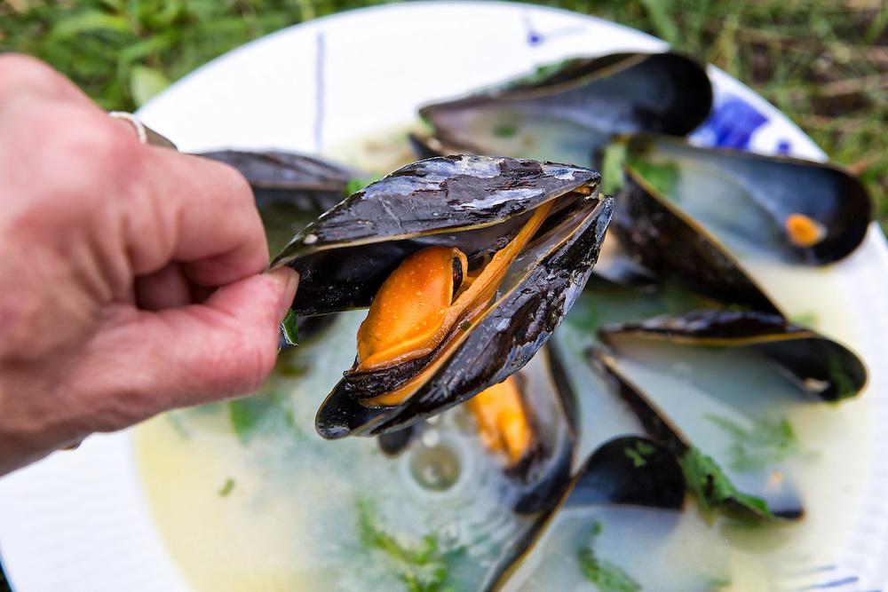 Saksun Lake, Faroe Islands, blue mussels cooked in the wild.
