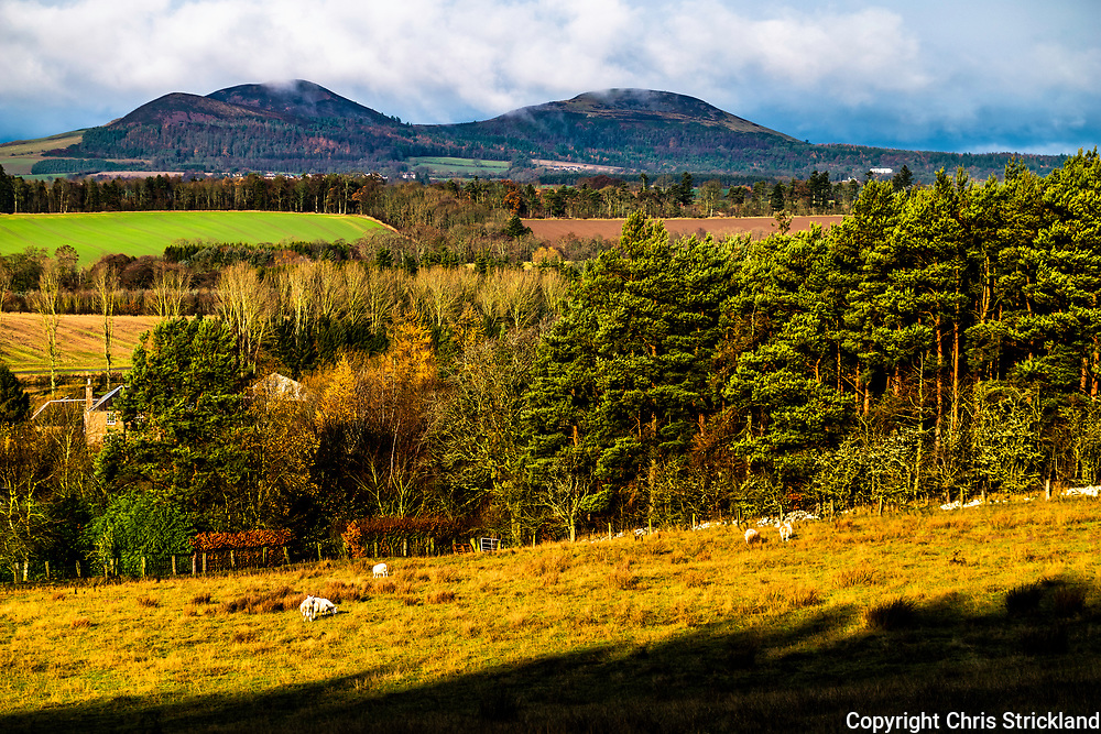 Ancrum, Jedburgh, Scottish Borders, UK. 21st November 2018. Looking north towards the Eildon Hills from Rawflat Farm near Ancrum village.
