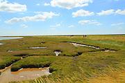 Butley Creek river landscape, Boyton, Suffolk, England, UK people walking footpath on flood defence bank wall