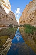 Ein Avdat, sweet water spring at the negev desert, israel