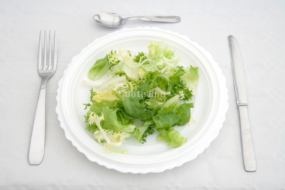 plate and utensils with green salad