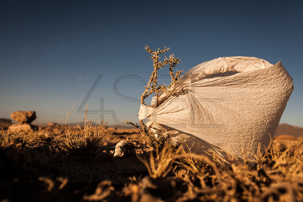 08/11/2014 - Uyuni, Bolivia:Plastic tree #66. Plastic bags are part of the landscape of the Bolivian Altiplano. The accumulation of plastic bags on the environment cause deterioration of the landscapes and agriculture soils and it is associated to the death of domestic and wild animals.