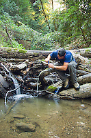 A backpacker filters water from a stream on Pine Ridge Trail, Big Sur, California.