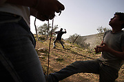 Palestinian youths in Qatana throw stones using slingshots protesting the construction of the security barriers in the middle of the mountain.