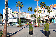 Palm trees cast shadows in new port development Muelle Uno in Malaga, Spain